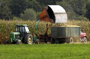 Sustainable Farming Generally Uses Farming Methods That Are Friendly To Our Health.