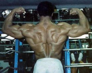 Leon's Great Back Development In 1986.