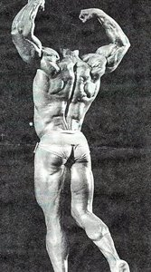 This Exercise Would Also Help Build Thickness In The Lats.
