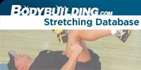 Stretching Database