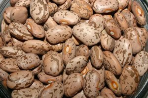 Pintos Compliment Every Type Of Cuisine And Are Very Inexpensive.