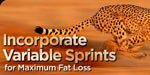 Incorporate Variable Sprints For Maximum Fat Loss!