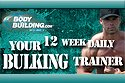 Your 12-Week Daily Bulking Trainer