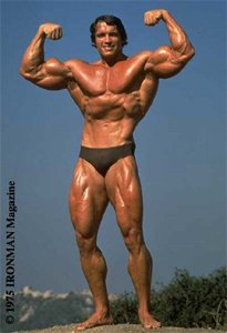 A Small Tight Waist Benefited Arnold Immensely On Stage.