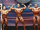 2010 IFBB Europa Battle Of Champions Men's Photos!