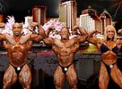 2010 Pro Bodybuilding Weekly Championships Info!