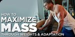 How To Maximize Mass Through Weights & Adaptation!