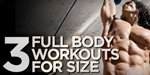 3 Full Body Workouts For Size!