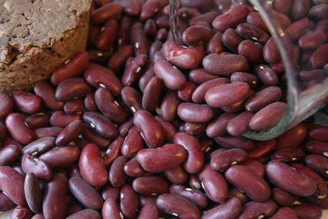 Beans Pack A Very High Calorie Punch That Are Great For Those Who Require More Calories.
