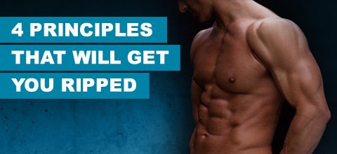 http://www.bodybuilding.com/fun/images/2010/4-principles-that-will-get-you-ripped2.jpg