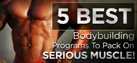 Best bodybuilding program forum