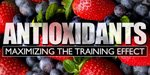 Antioxidants - Maximizing The Training Effect.