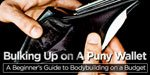 Bulking Up On A Puny Wallet: A Beginner's Guide To Bodybuilding On A Budget!