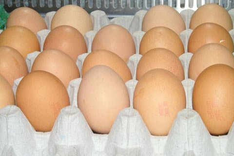 Eggs, One Of The Cheapest Sources Of Protein Around, Are Higher Priced Than Protein Powders.