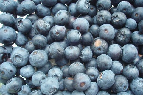 Blueberries Are Loaded With Antioxidant Polyphenols - Compounds That Decrease Inflammation And Free Radical Damage