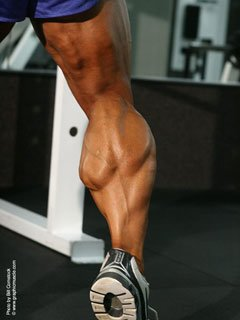 When Doing Cardio During Contest Time My Calves Always Get Bigger.