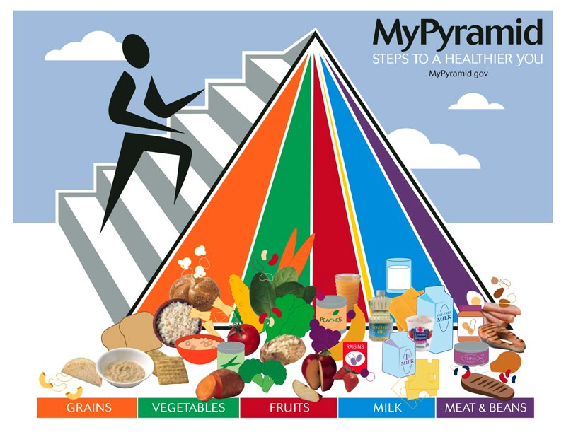The Food Pyramid Making You Fat? Why It Doesn't Work ...