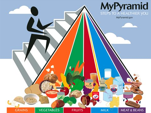The Current USDA Food Pyramid, Updated In 2005.