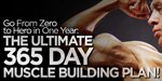 Go From Zero To Hero In One Year: The Ultimate 365 Day Muscle Building Plan!