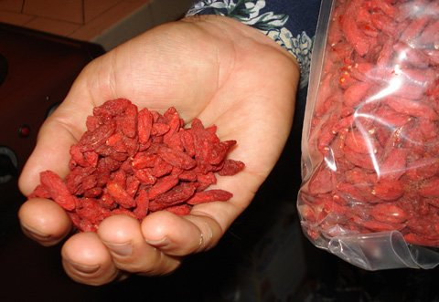 Anyone With Vision Or Repertory Diseases Must Eat Goji Berries.