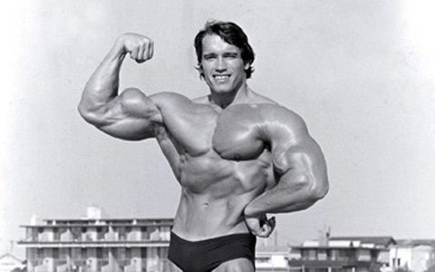 The Austrian Oak, Arnold Schwarzenegger.