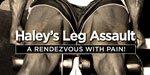 Haley's Leg Assault: A Rendezvous With Pain!