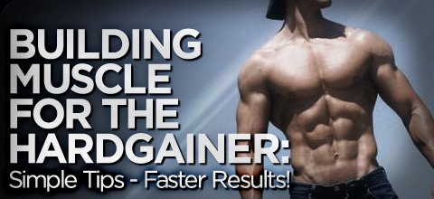 Building Muscle For The Hardgainer: Simple Tips - Faster Results!