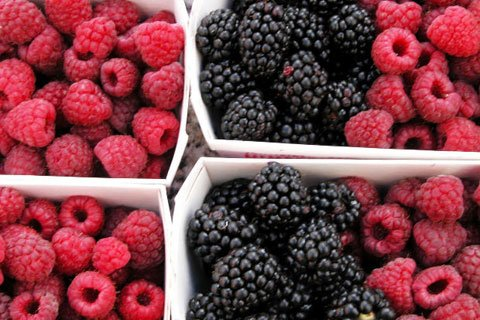 Blue, Red, And Purple Fruits Contain Helpful Antioxidants That Can Aid Healing.