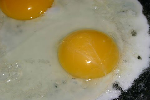 A Whole Egg Has A Higher Biological Value Than Just An Egg White Due To Its Fat Content.