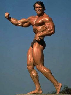 Arnold Was A Strong Believer In Super-Setting Differenet Body-Parts.