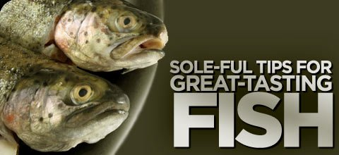 Sole ful tips for great tasting fish for Sole fish nutrition