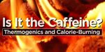 Thermogenics And Calorie Burning: Is It The Caffeine?