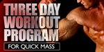 Three Day Workout Program For Quick Mass!