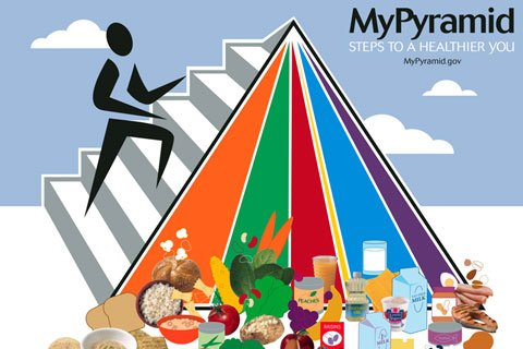 Trying To Educate The Public On Nutrition With Charts Like The Food Guide Pyramid Has Little Effect.