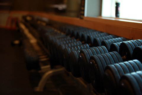 Research Has Shown That Free Weights Are Superior To Machine Weights In Muscle Recruitment And Activation.