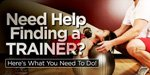 Need Help Finding A Trainer? Here Is What You Need To Do!
