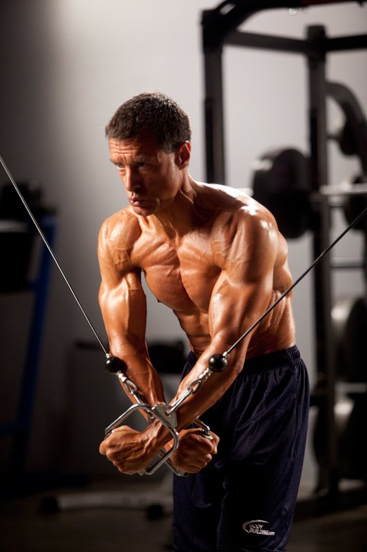 top 10 facts about the muscular system, Muscles