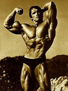 Symmetry Schwarzenegger