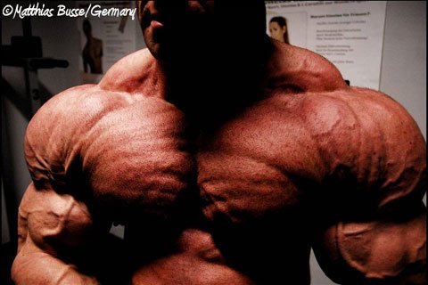 Ronny Rockel At 238 Pounds, Two And A Half Weeks Out From The 2010 Arnold Classic.