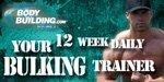 Daily Bulking Trainer!