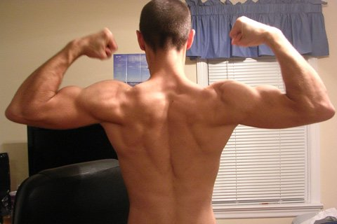 Results Kept Fueling My Workouts And Every Few Weeks I Would See A New Muscle Group