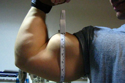 Individuals With Bigorexia Feel They Are Small When In Fact They Are Larger And More Muscular Than Most.