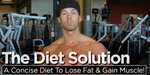 The Diet Solution: A Concise Diet To Lose Fat & Gain Muscle!
