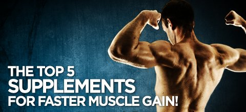 Best supplements to gain muscle bodybuilding forum