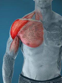 Exercícios de aumento em um peito