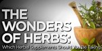 The Wonders Of Herbs:  Which Herbal Supplements Should You Be Taking?