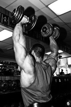 Pile on the pounds, stretch your Animal T from east to west.