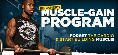 Beginner's Muscle-Gain Program: Stop Worrying & Start Training!
