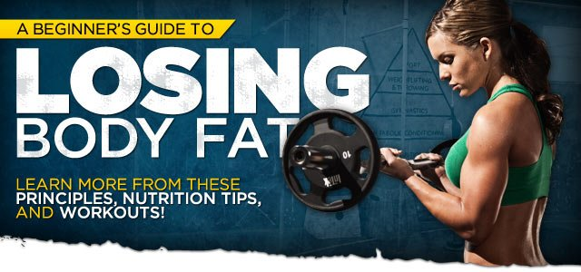 Beginner's Guide To Losing Body Fat!