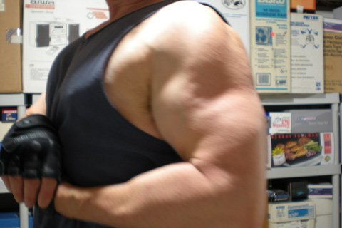 I Want To Convey A Sense Of Bodybuilding Accomplishment In The Same Fashion That I Feel It Myself.